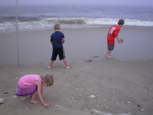 Grandchildren gathering shells on the Atlantic coastline near Sandy Hook Lighthouse in New Jersey